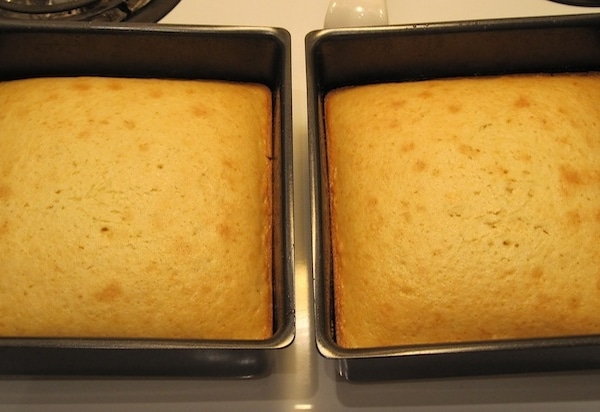 Two cakes in cake pans.