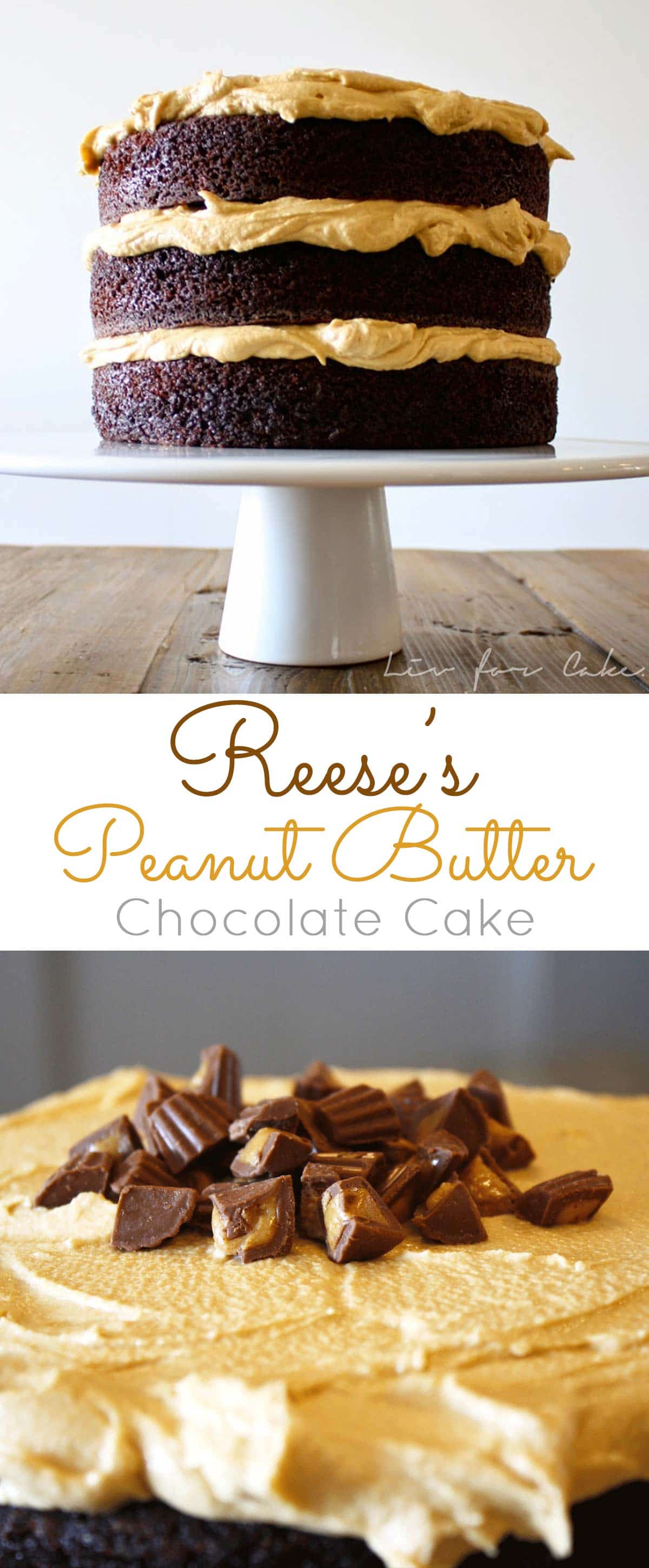 Reese's Peanut Butter Chocolate Cake! A rich and delicious chocolate cake with a whipped peanut butter frosting and mini Reese's peanut butter cups. | livforcake.com