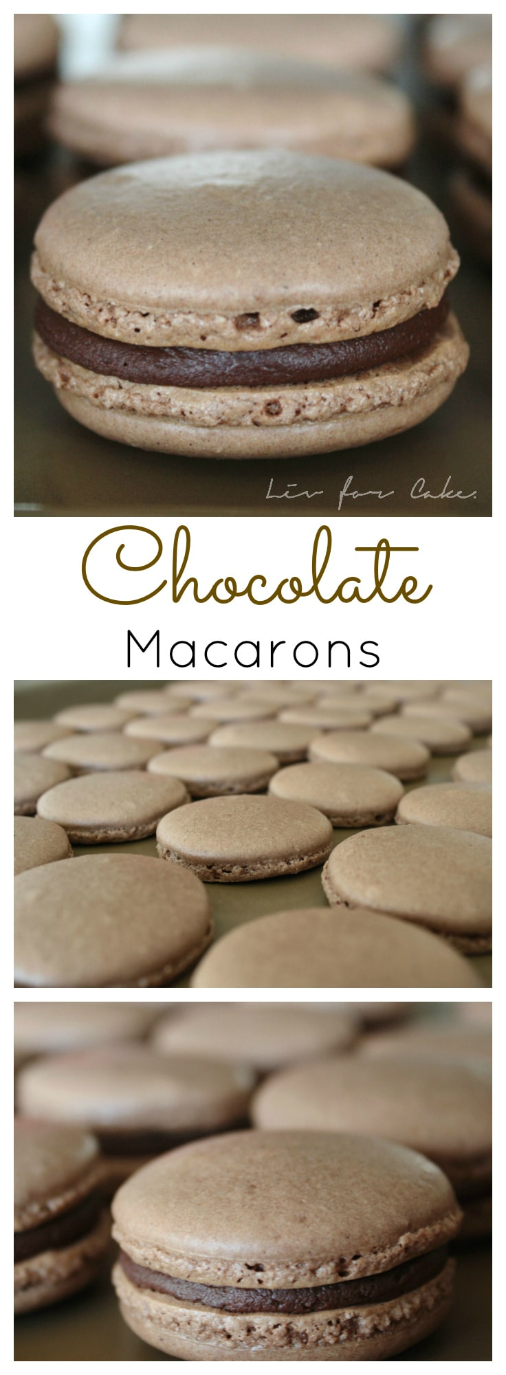 Chocolate macarons filled with a rich dark chocolate ganache. | livforcake.com