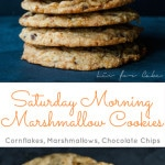 Momofuku Milk Bar's signature cornflake chocolate chip marshmallow cookies are a perfect reminder of what Saturday mornings were like as a kid.   livforcake.com