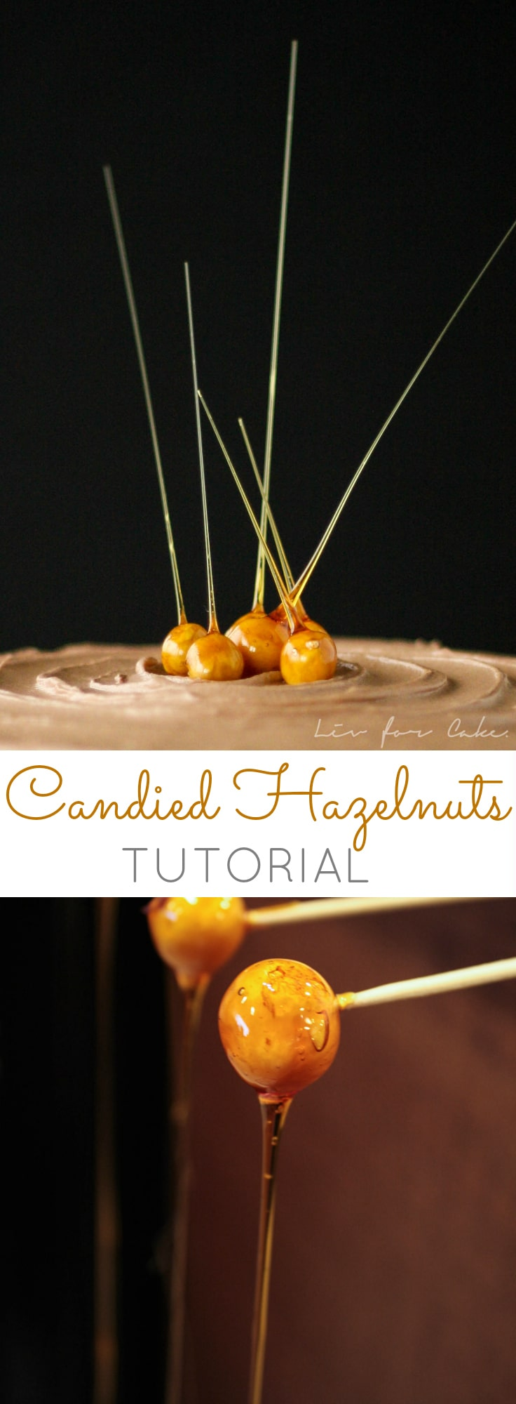 A quick and easy tutorial on how to make these stunning candied hazelnuts. | livforcake.com