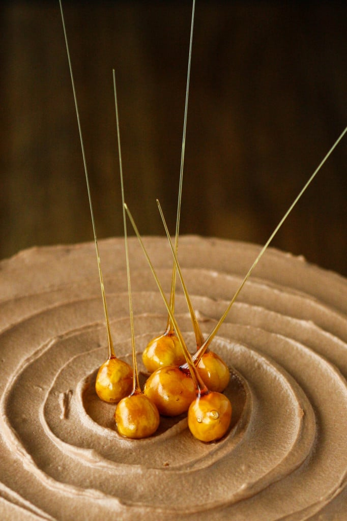Candied hazelnuts on top of a cake.