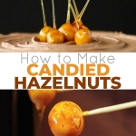 A tutorial on how to make Candied Hazelnuts.   livforcake.com