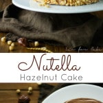 A delicious Nutella buttercream with a classic vanilla cake.   livforcake.com