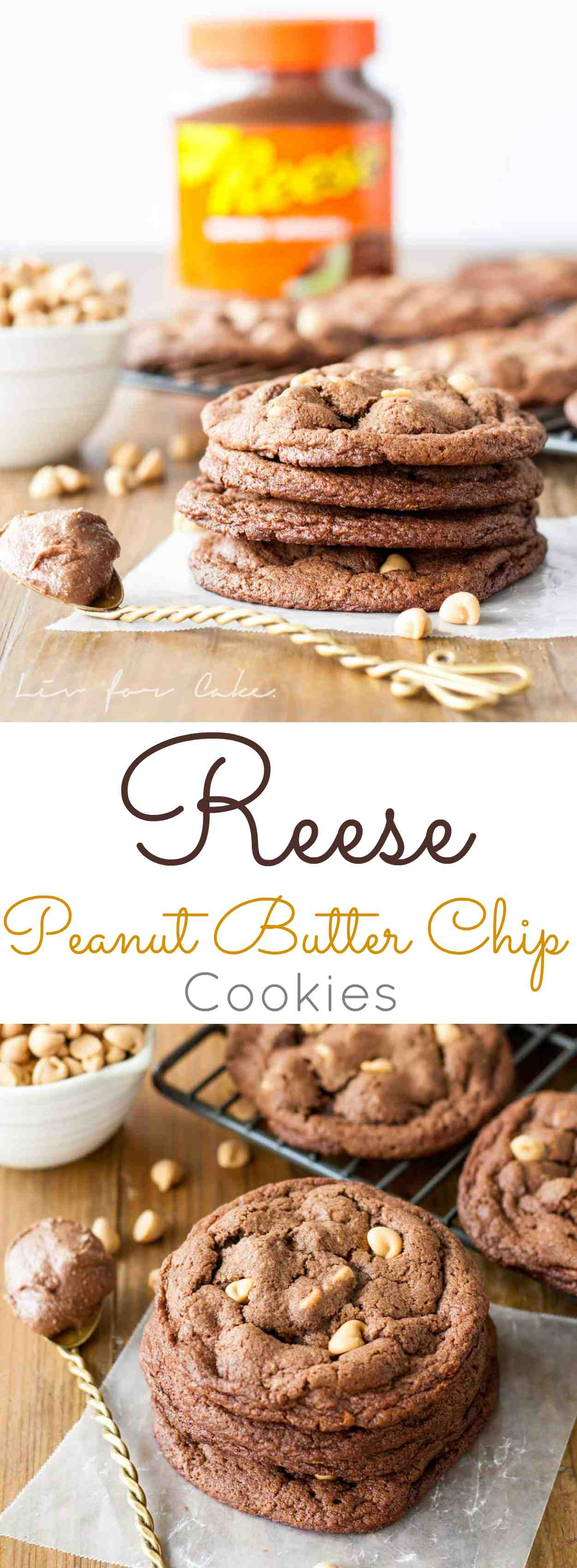 Ultra chewy peanut butter chip cookies made with Reese Chocolate Peanut Butter Spread.   livforcake.com