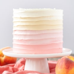 Pretty in Peach! This Peach Cake is the perfect way to make the most of stone fruit season. Vanilla cake layers with a homemade peach filling and peach flavoured frosting. | livforcake.com