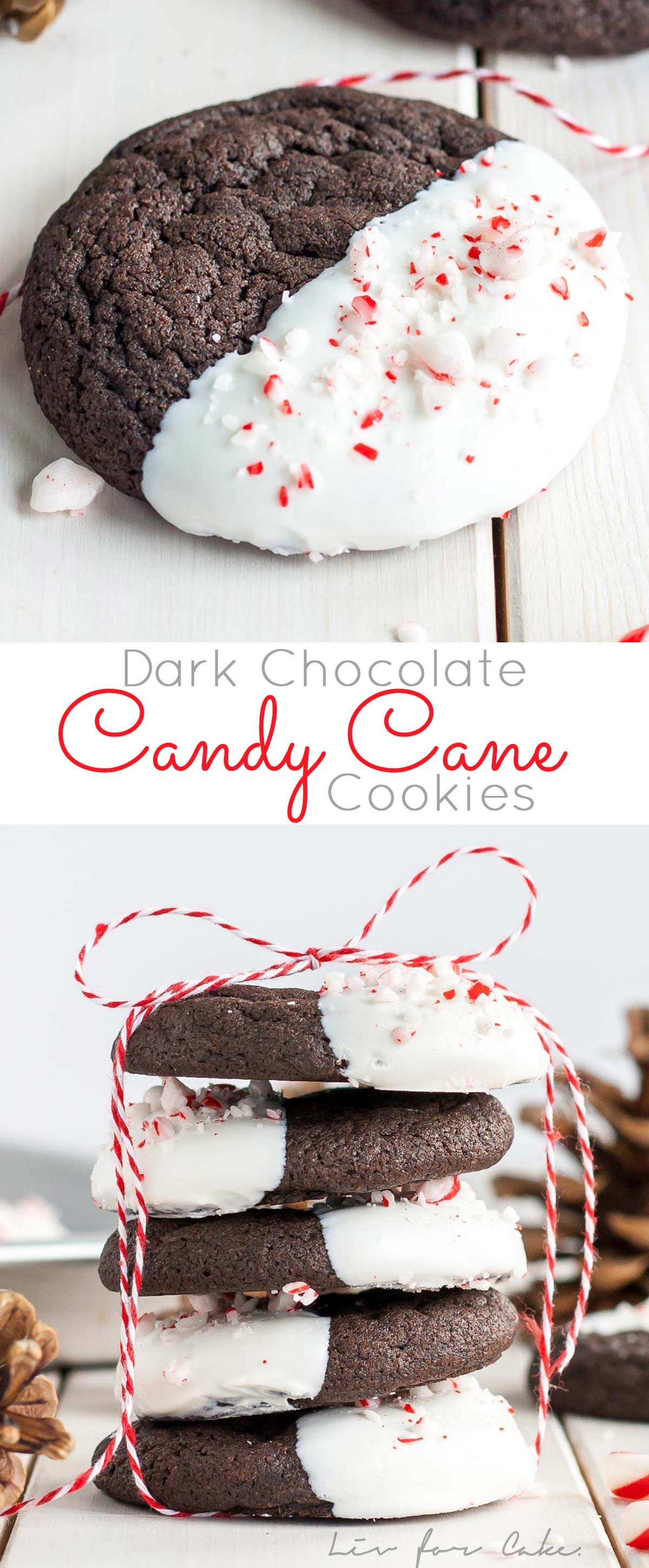 Dark Chocolate Candy Cane Cookies! The classic combination of chocolate and peppermint make these Dark Chocolate Candy Cane Cookies the perfect treat for the holidays!