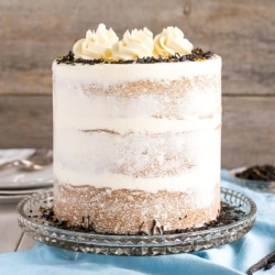 Naked cake on a cake stand.