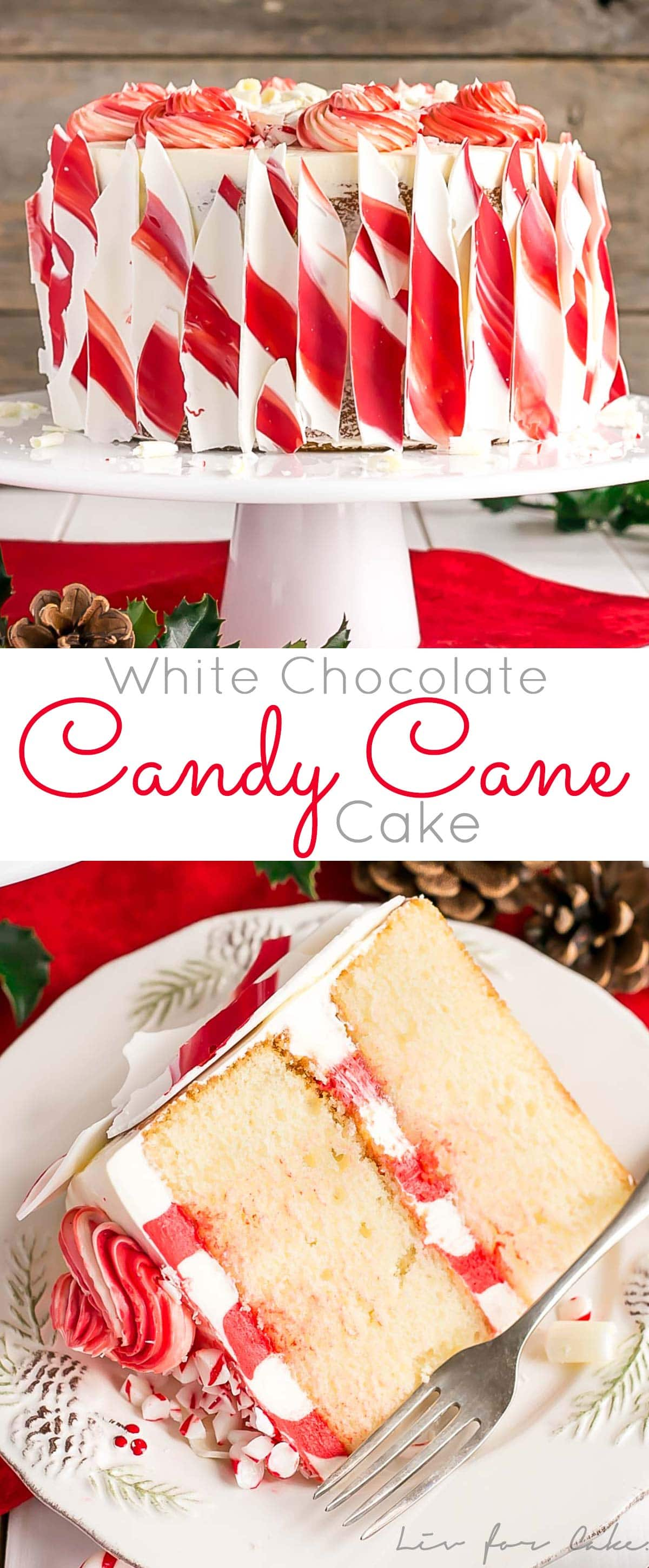 This White Chocolate Candy Cane Cake is the perfect addition to your holiday celebrations! | livforcake.com