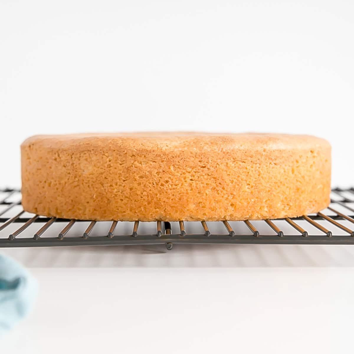 2 x Cake Pan Strips Bake Even Strips Purple Bake Moist Level Cake Baking Tool
