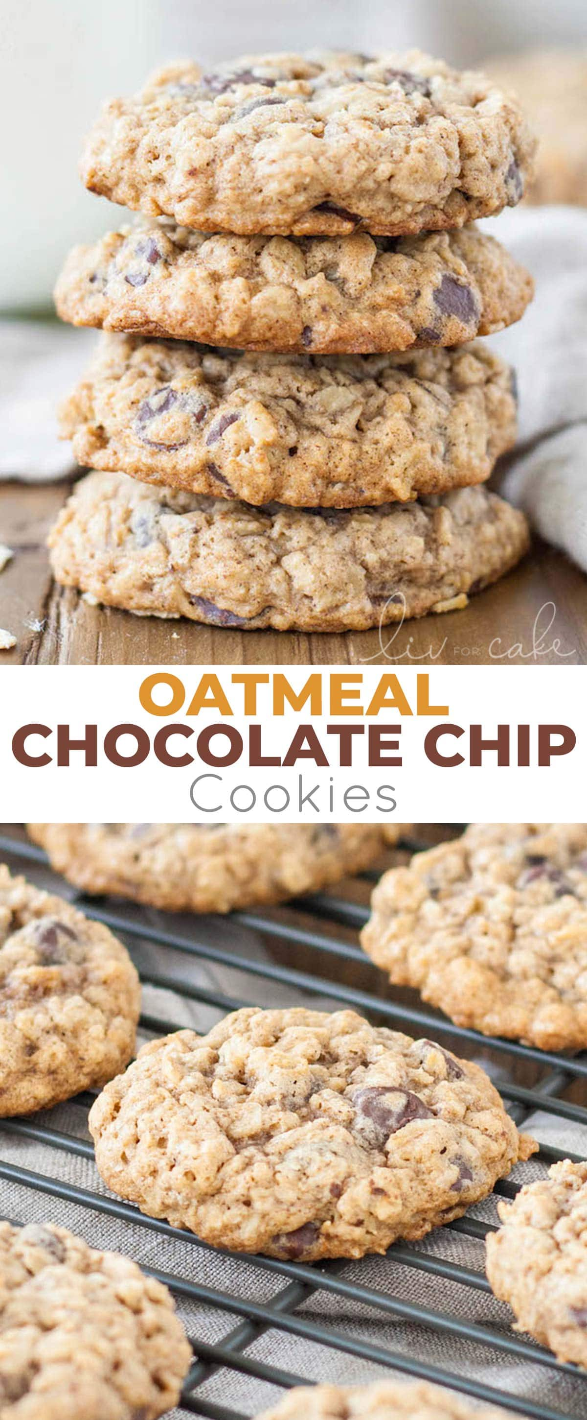 Oatmeal Chocolate Chip Cookie photo collage