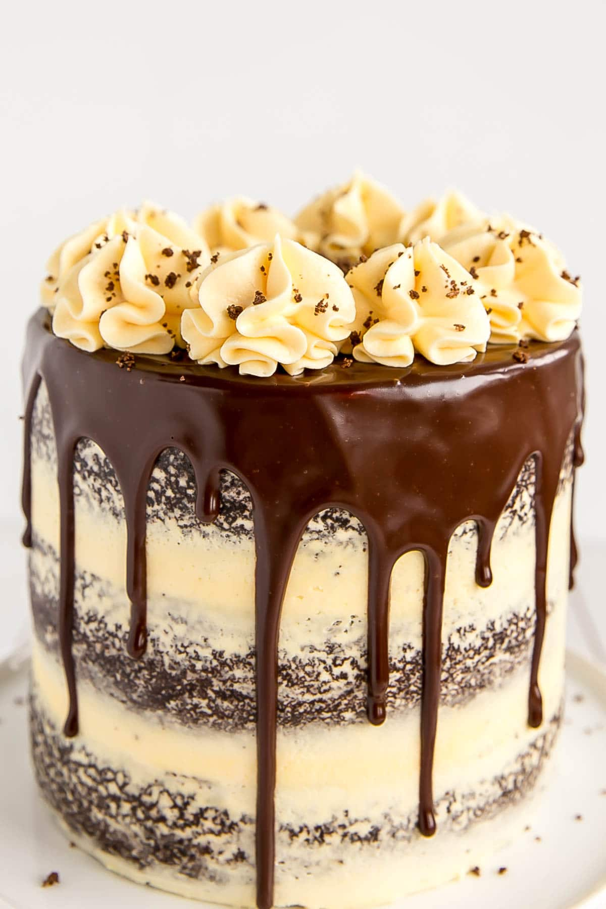 Chocolate cake with vanilla custard frosting.