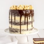 Nanaimo Bar Cake
