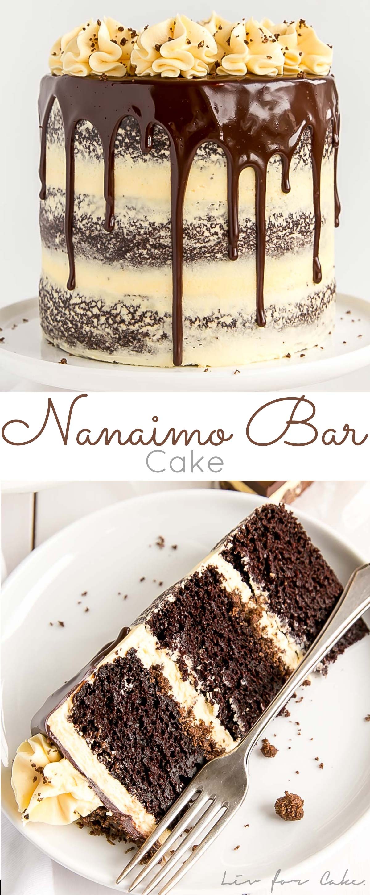 Nanaimo Bar Cake Collage