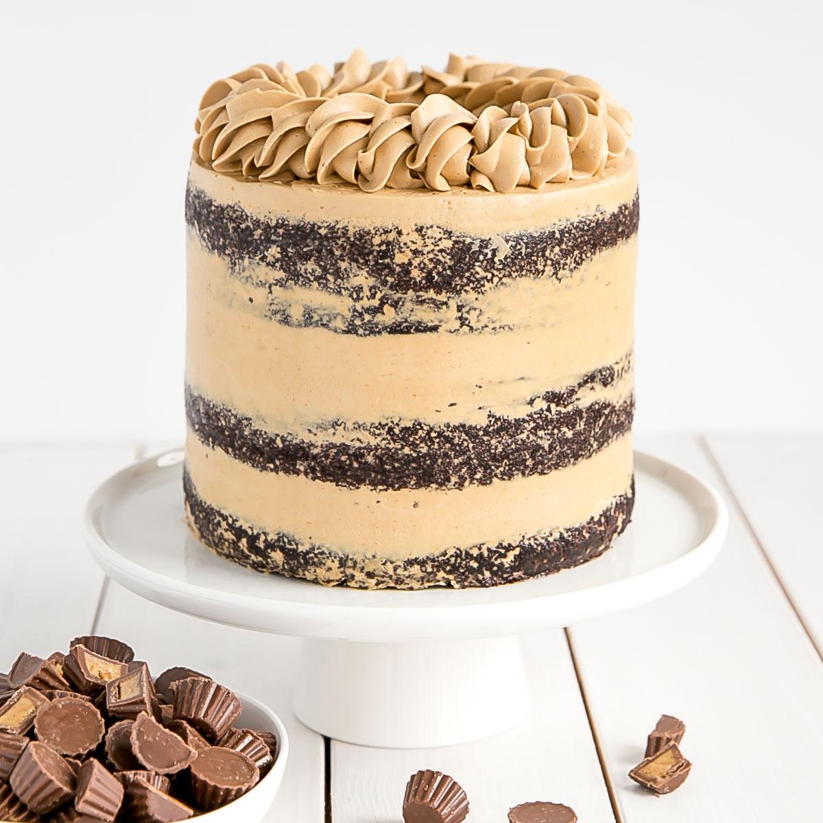 Peanut Butter Chocolate Cake Liv For