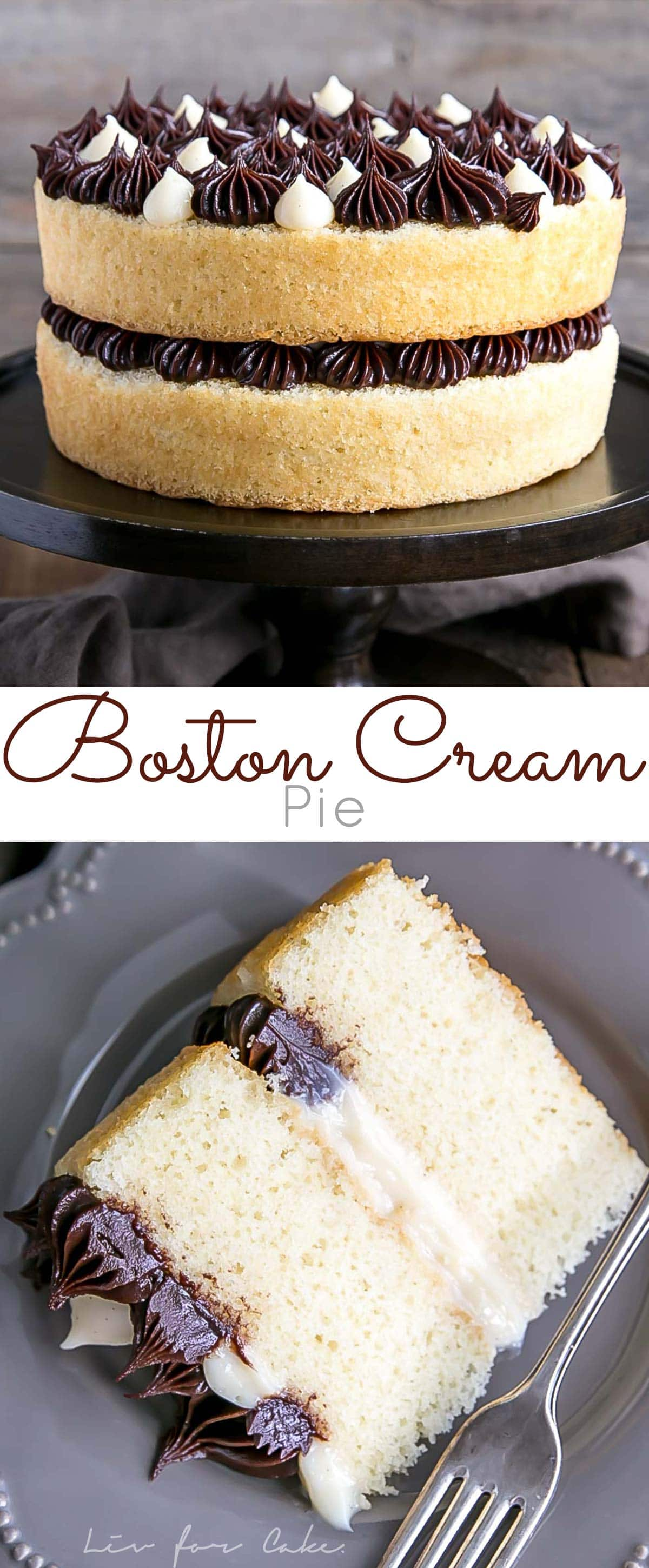 The classic Boston Cream Pie gets a modern makeover! Vanilla cake layers, creamy custard, and a rich chocolate ganache.
