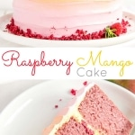 This Raspberry Mango Cake is the perfect way to celebrate the summer months. Raspberry cake layers and a heavenly mango frosting.   livforcake.com