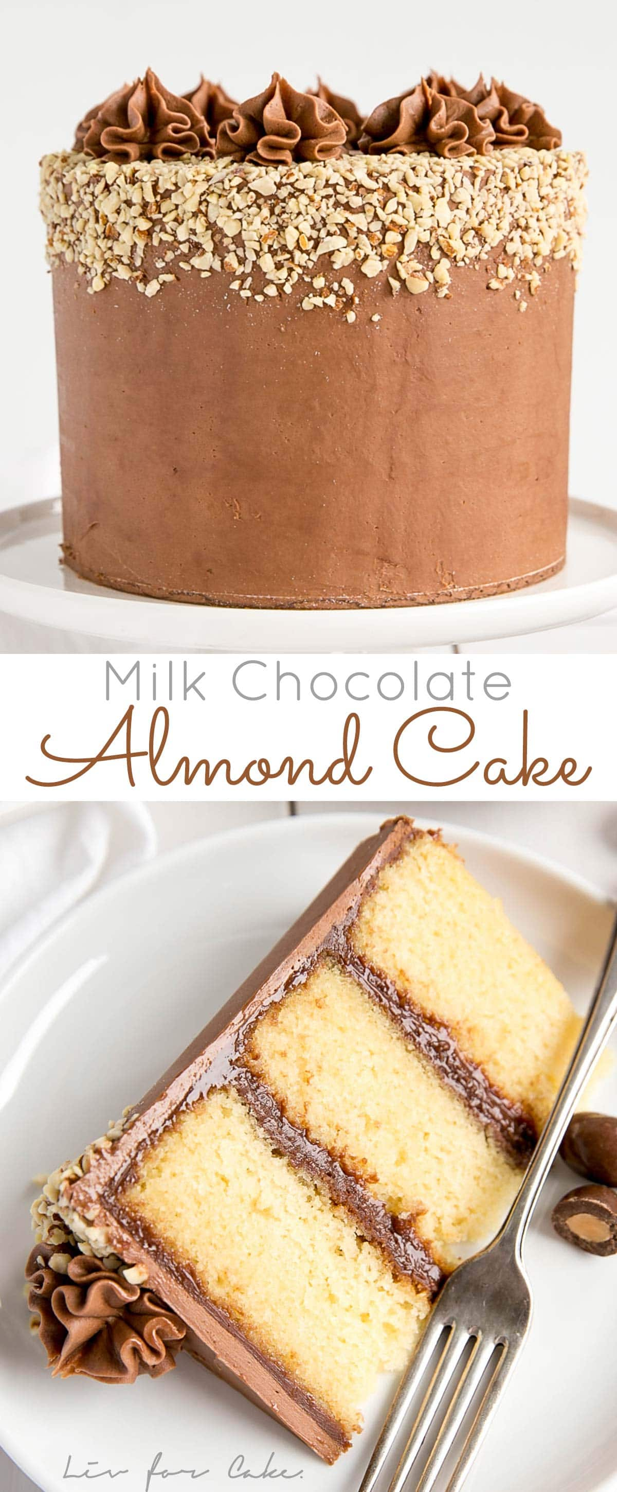 Milk Chocolate Almond Cake!