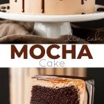 Mocha Cake! A rich dark chocolate cake with a silky mocha swiss meringue buttercream. | livforcake.com