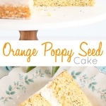 Tender Orange Poppy Seed Cake layers with a delicious mascarpone frosting.   livforcake.com