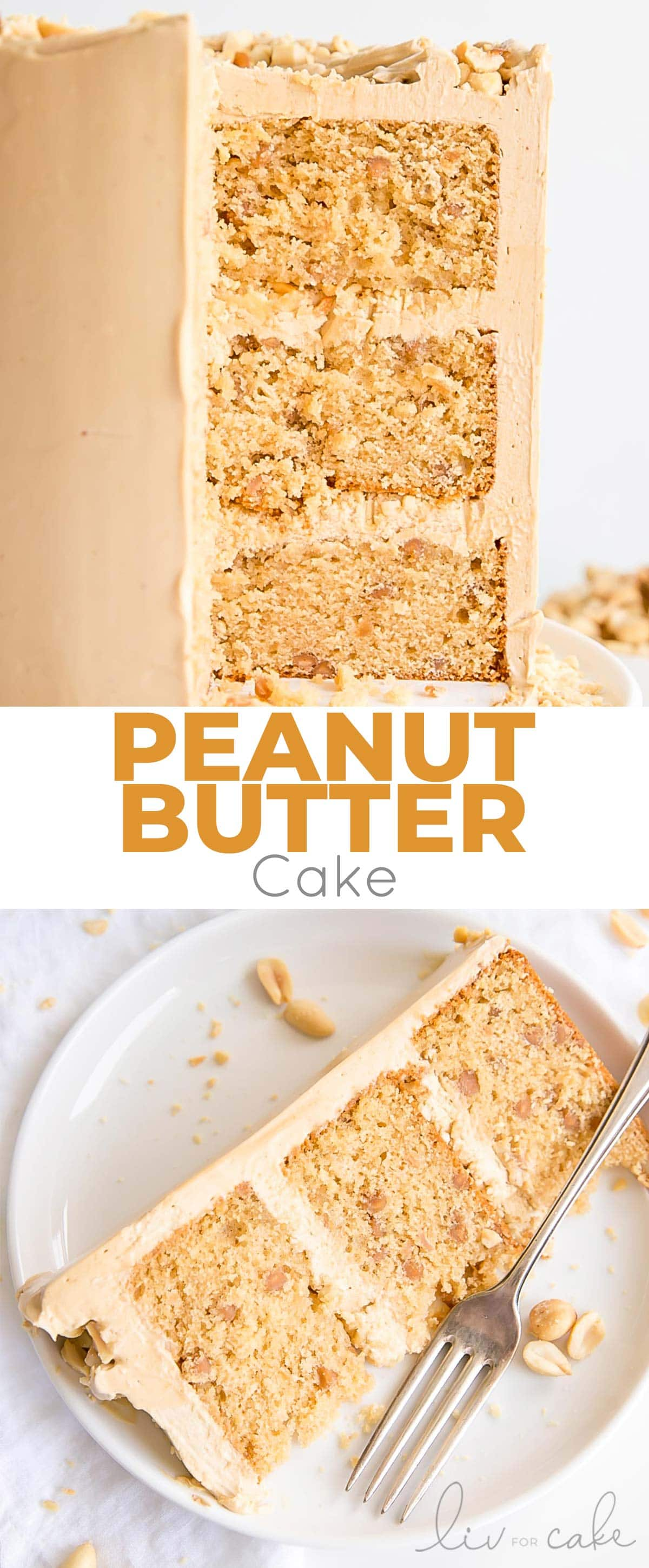 Peanut butter cake collage