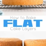 Learn how to bake flat cakes every single time! A simple tutorial on how to make sure your cakes come out nice and flat straight out of the oven. | livforcake.com
