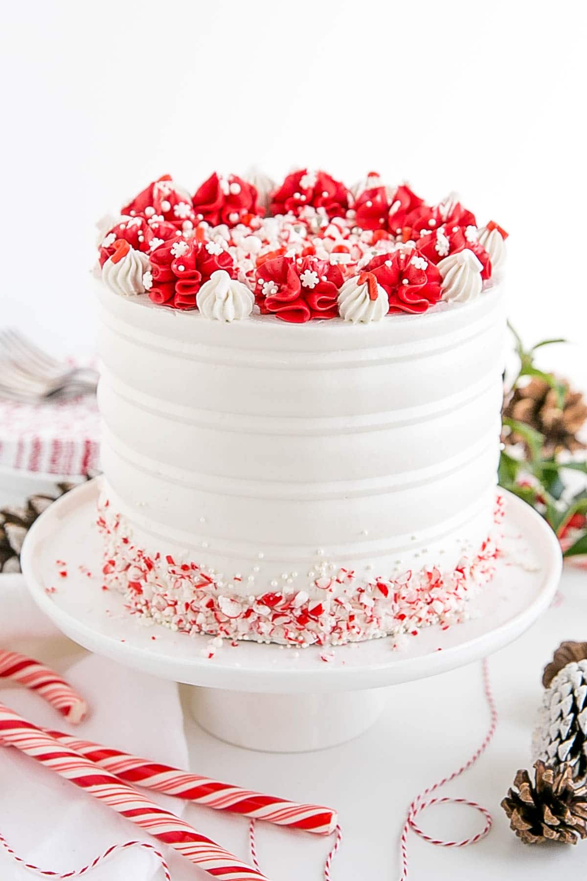 Angled shot of the cake with candy canes and pine cones as props.
